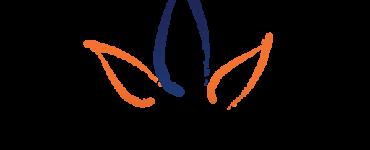 logo for coviswise.com